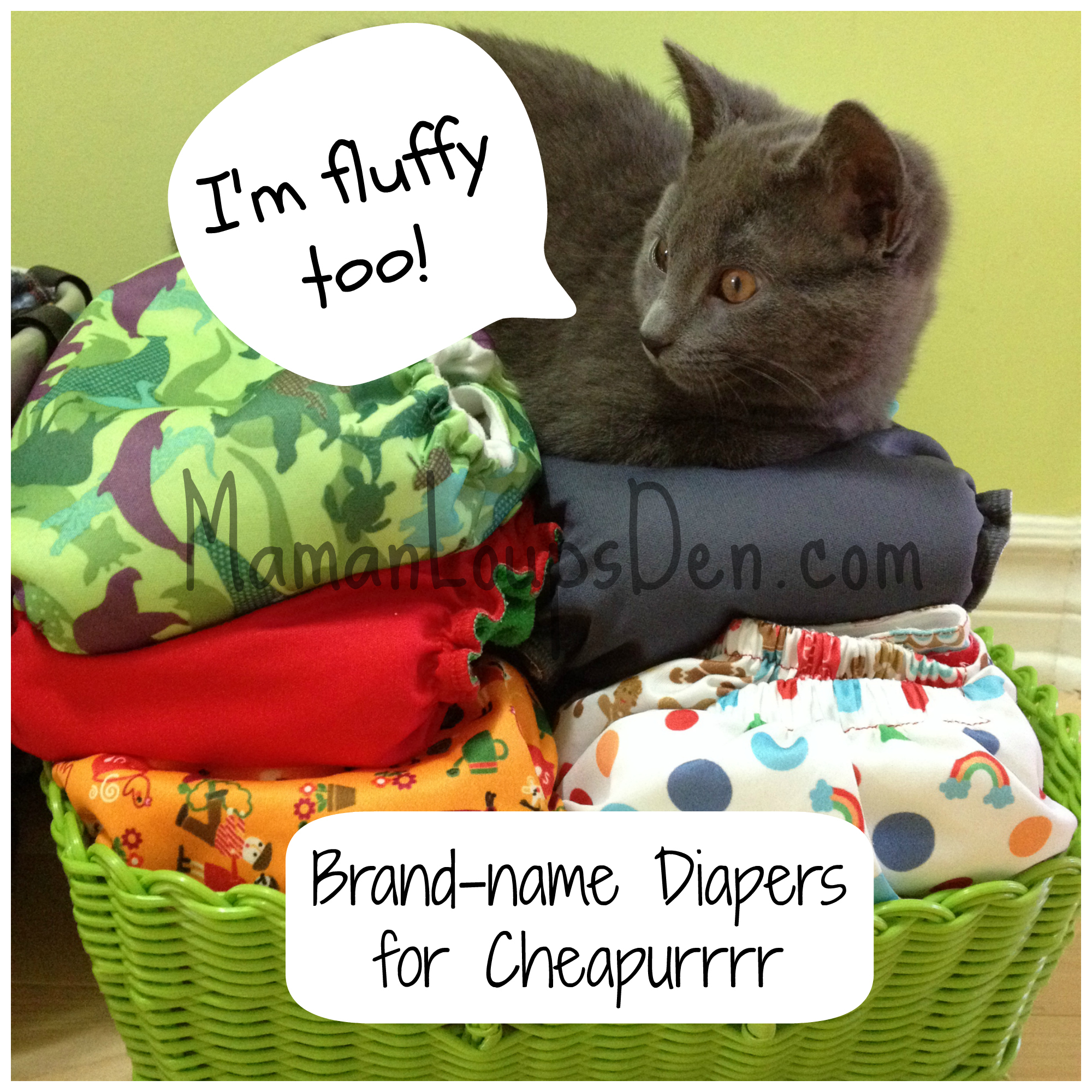 Brand Name Diapers for Cheapurrr