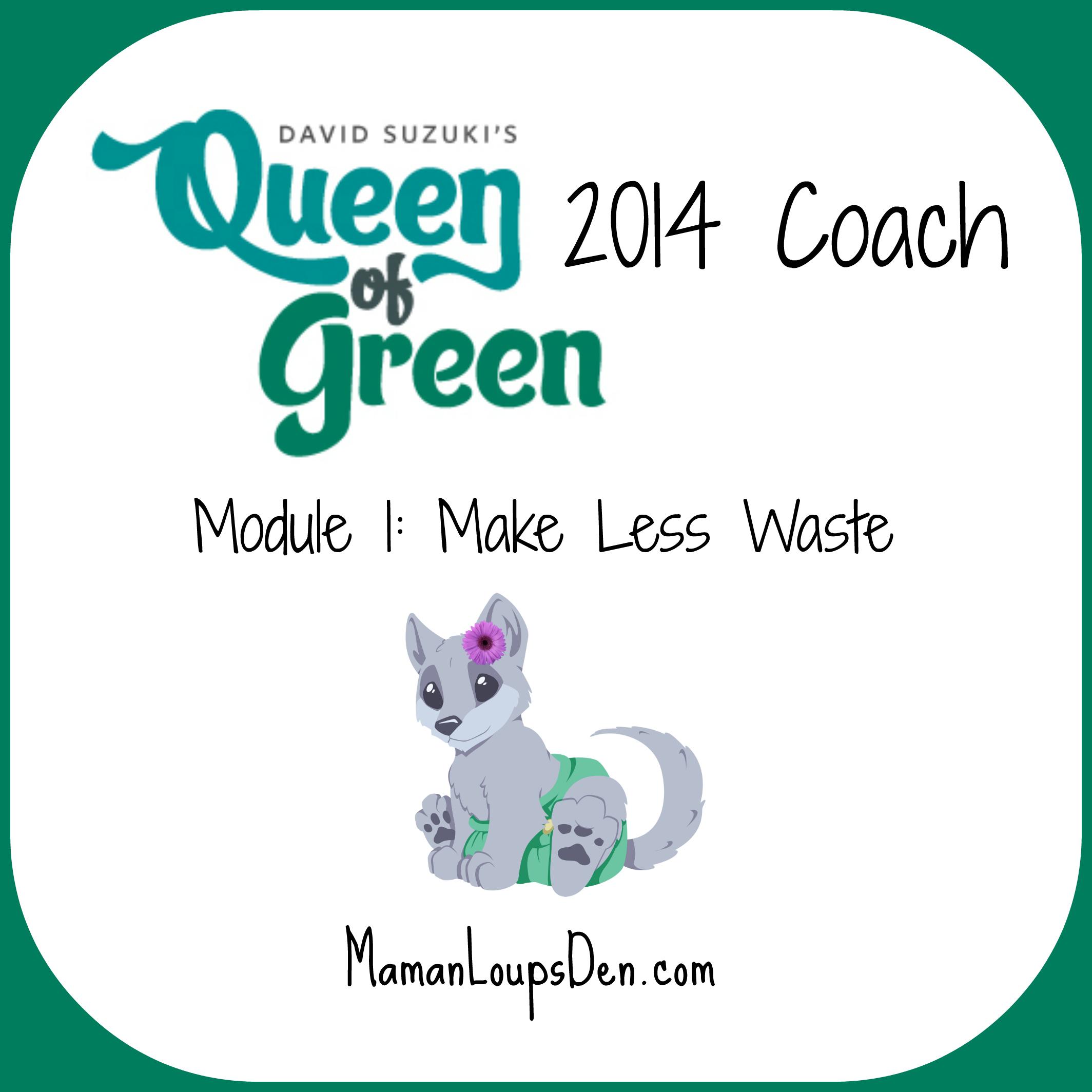 Queen of Green Coaching Module 1: Make Less Waste