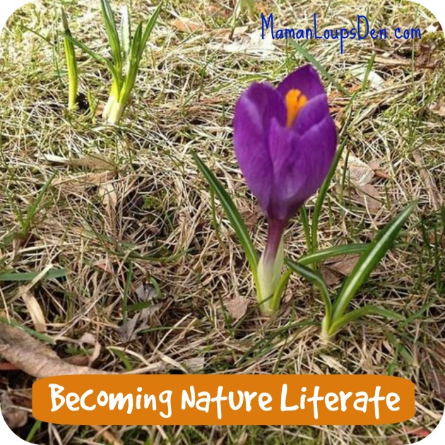 becoming nature literate #30x30challenge