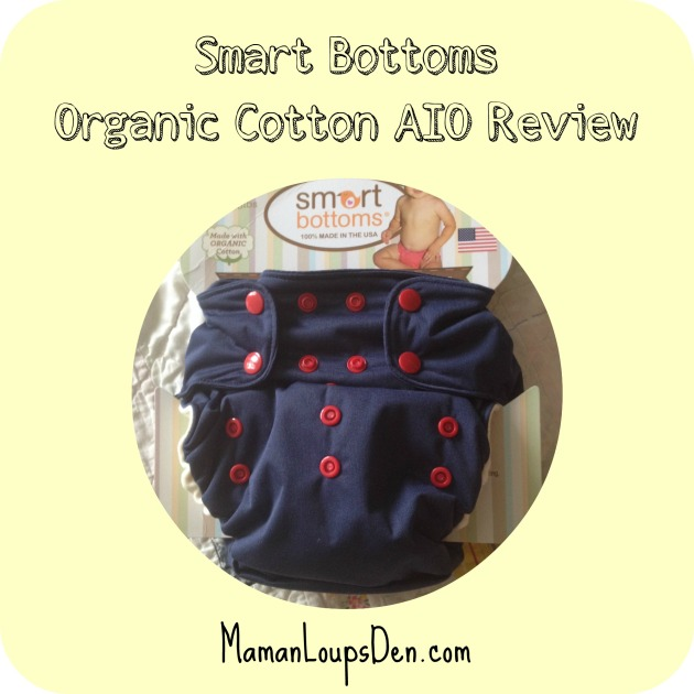 Smart Bottoms Organic Cotton AIO Review